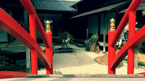 专访日本盆景大师(二)