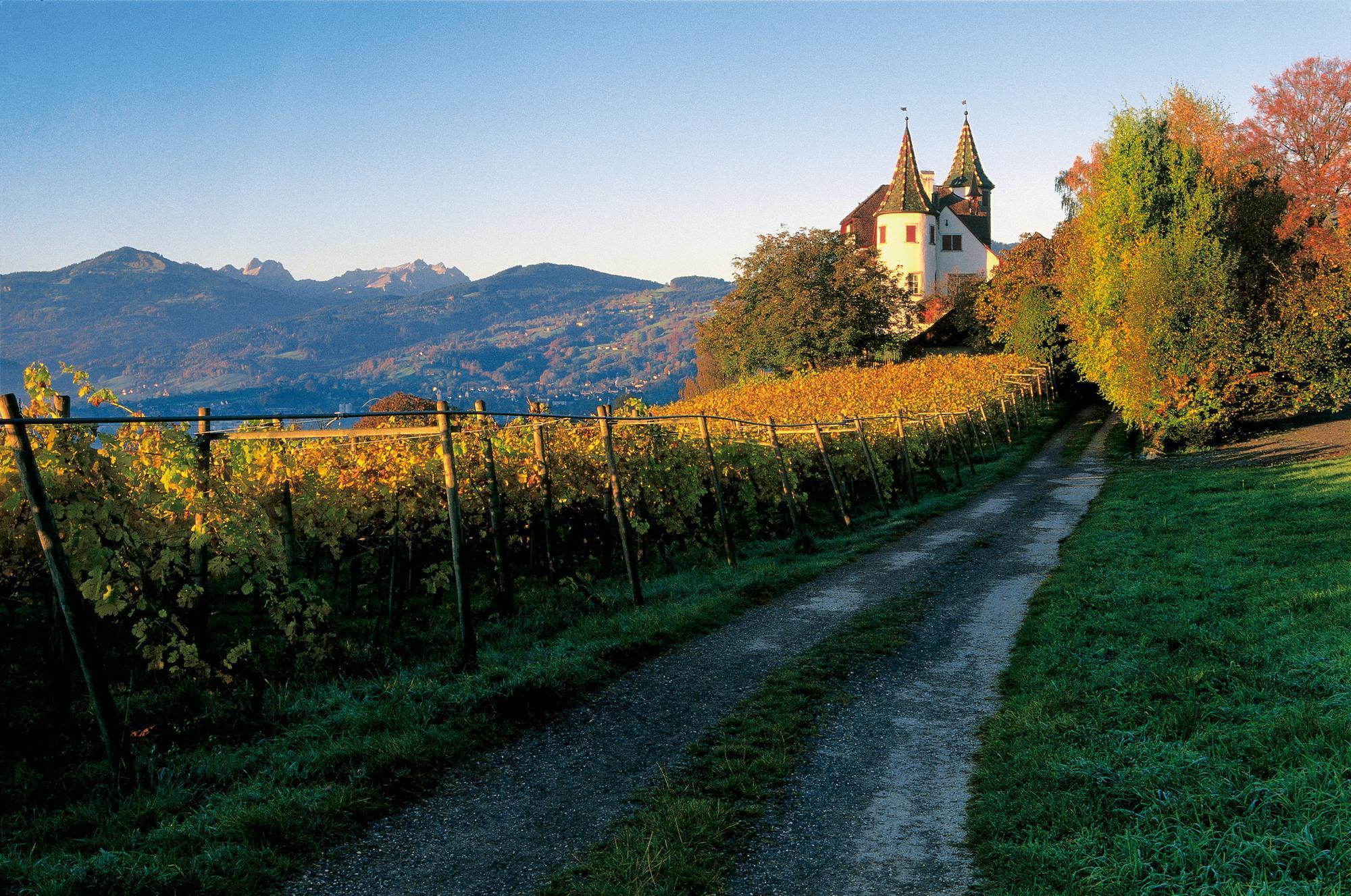 爱旅游 | 法国香槟:名城与美酒的迦南之地