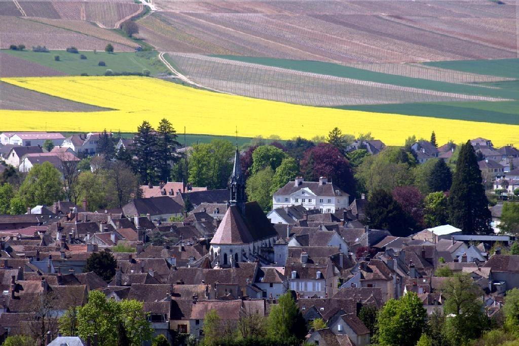 爱旅游 | 法国夏布利:传奇霞多丽之旅