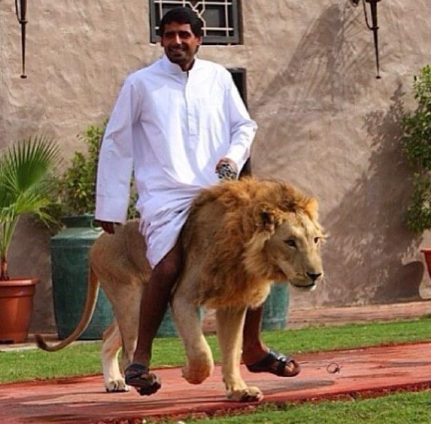 在迪拜 土豪你不懂!(有图有真相)